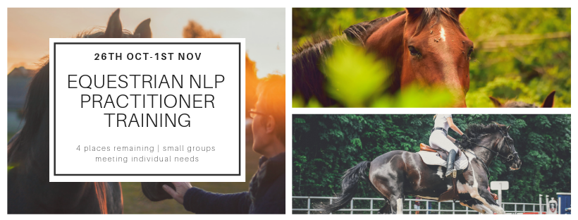 Equestrian NLP Practitioner training