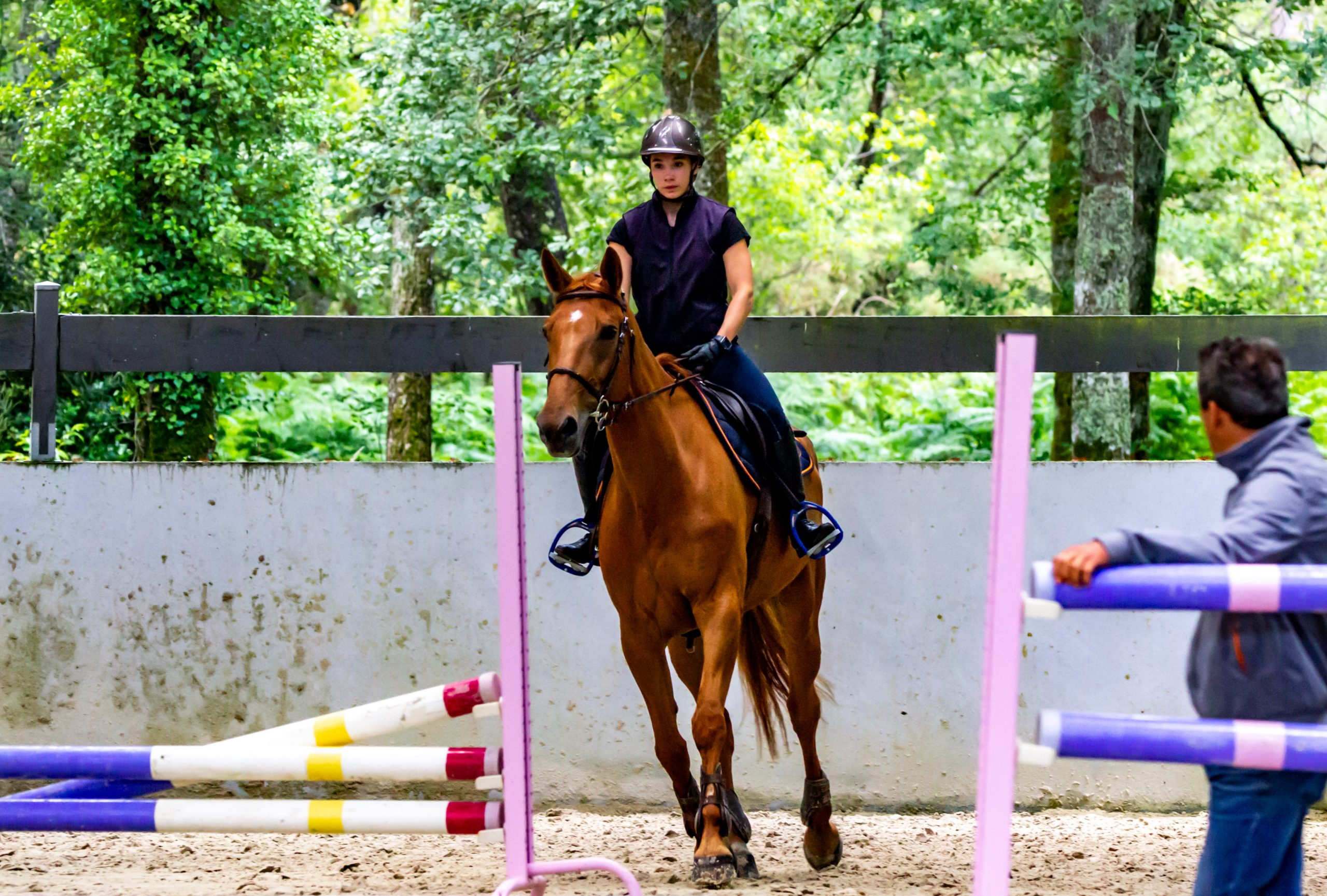 Taster session - Empowered Equestrian Coach