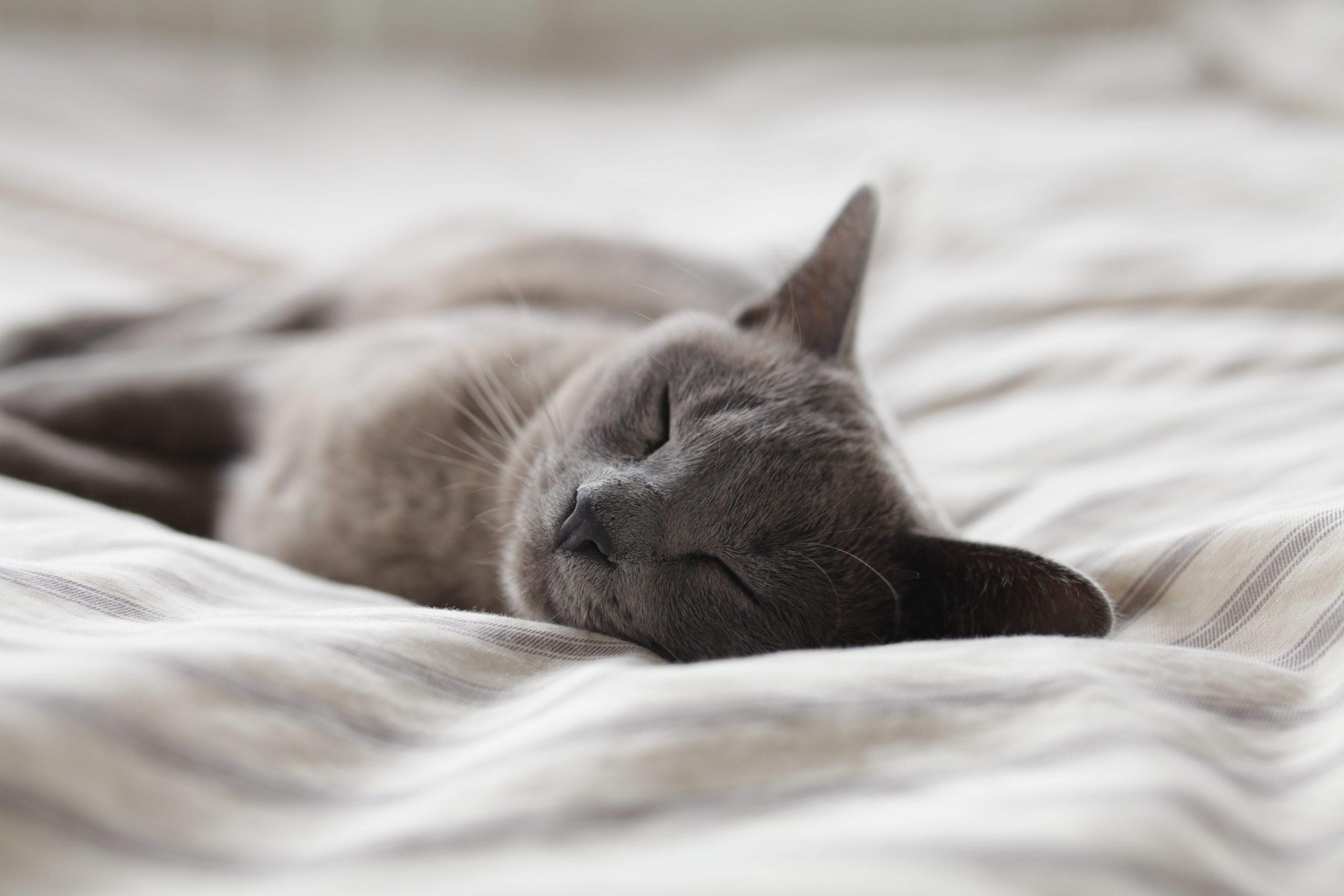Effortless sleep